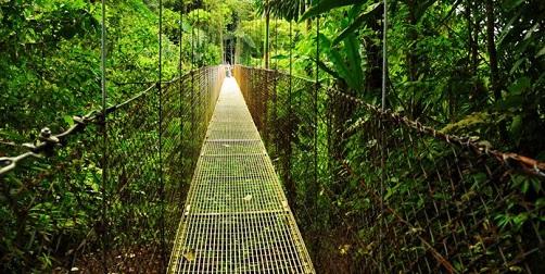 Costa Rica_Puentes Colgantes Arenal
