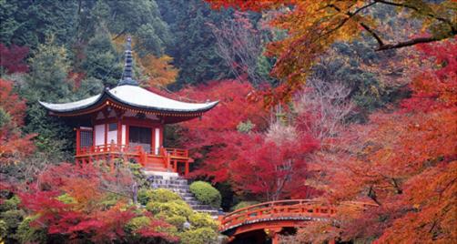 Japón 1